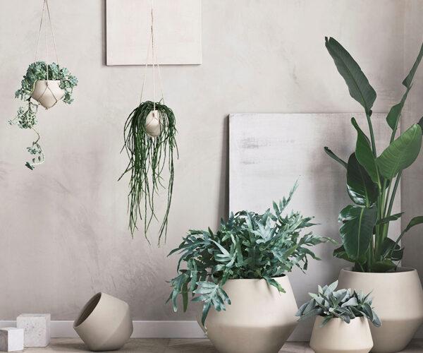 Grove plantekrukker for Bolia · Pressefoto